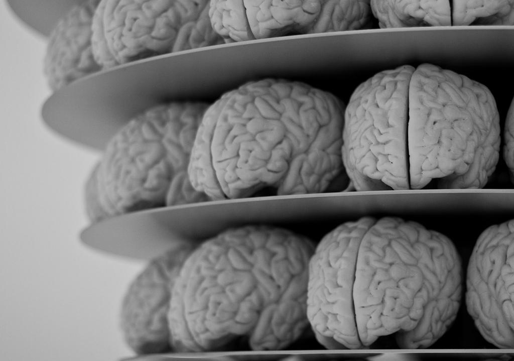 El género lírico y el cerebro humano