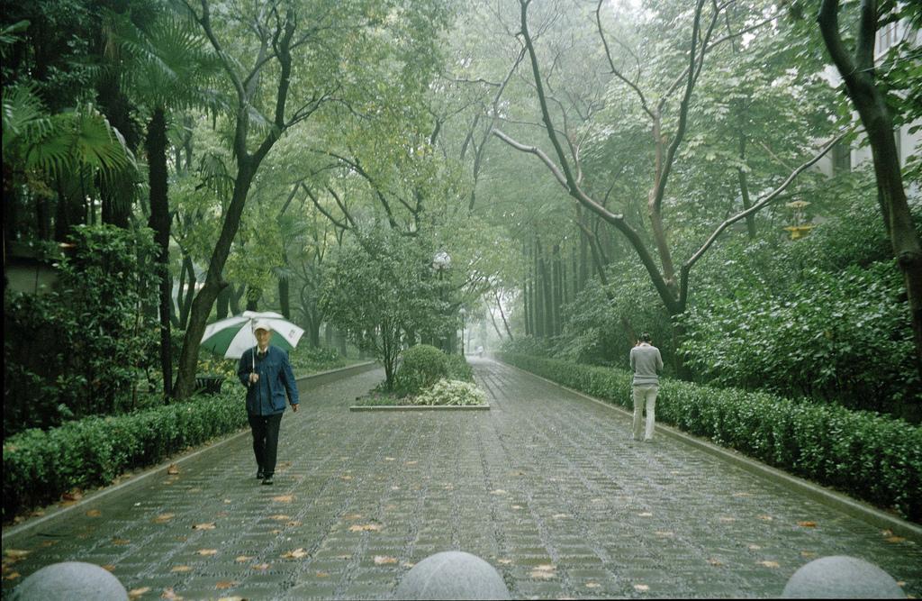 Leer y escribir en Shanghai, por Ángela Pradelli (II)