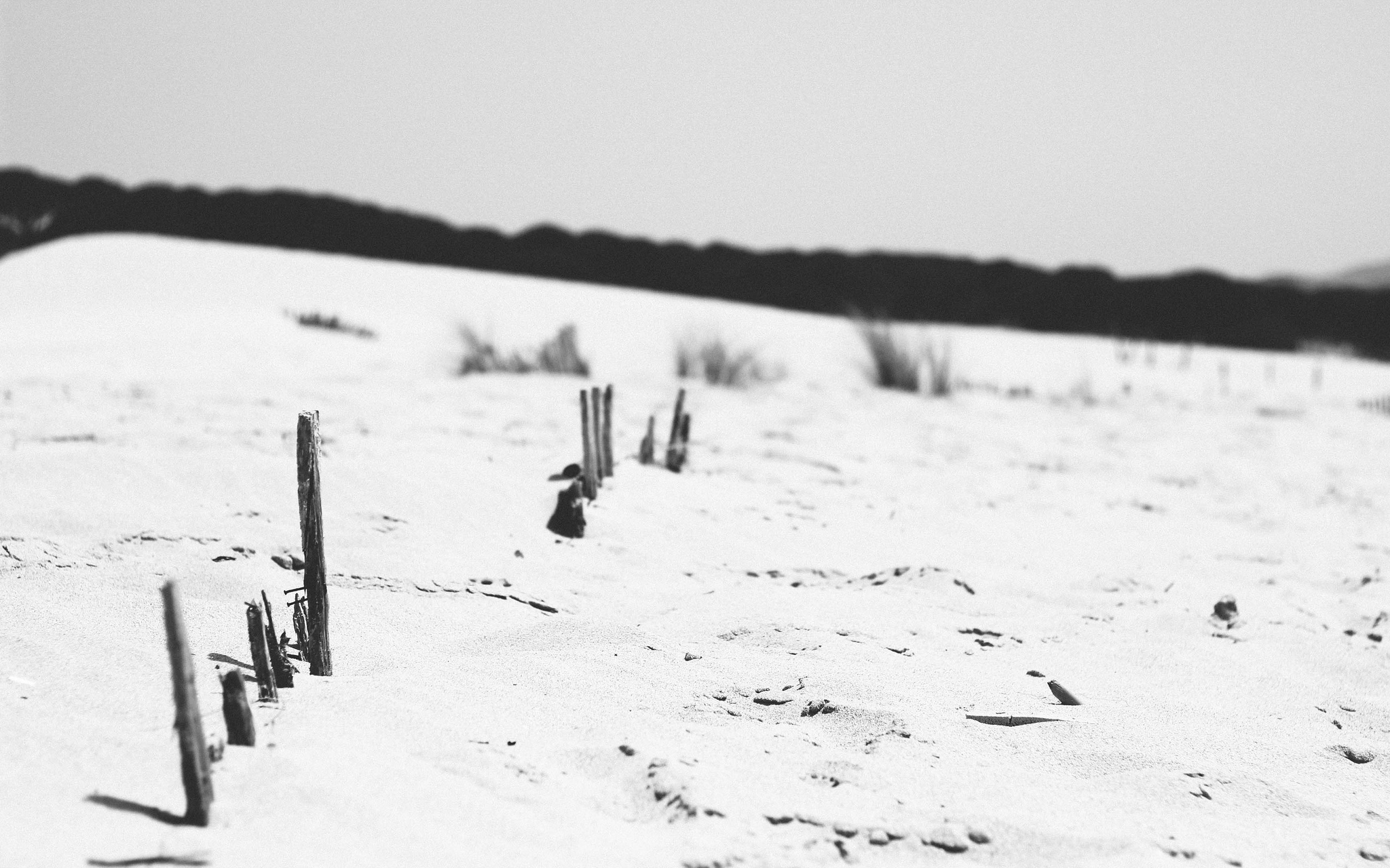 Seis poemas de invierno y nieve