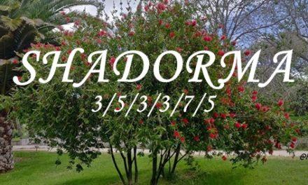 Pero… ¿Qué es el Shadorma?