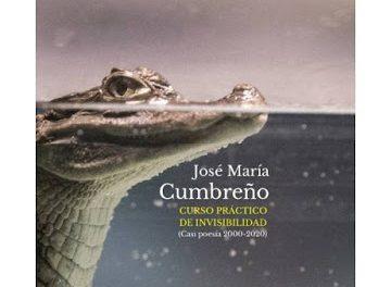 'Curso práctico de invisibilidad (Casi poesía 2000-2020)' de José María Cumbreño (Ed. Liliputienses, 2020)