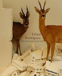 Un país de ruinas y vos de Tálata Rodriguez (Ed. Liliputienses, 2021)